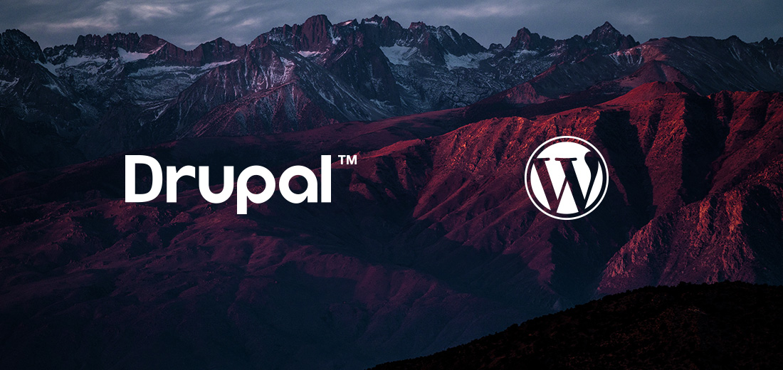 Drupal versus wordpress featured image