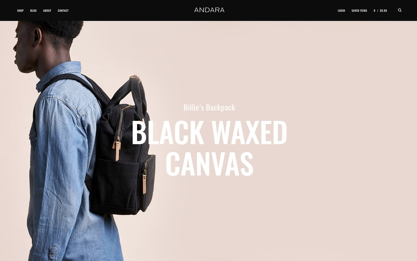 Andara WordPress Theme - Desktop Preview